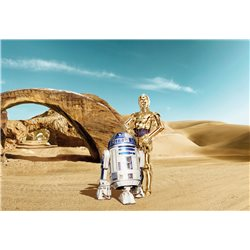 POSTER FOTOMURALE THE ORIGINAL STAR WARS WALLPAPER STAR WARS THREE DROIDS